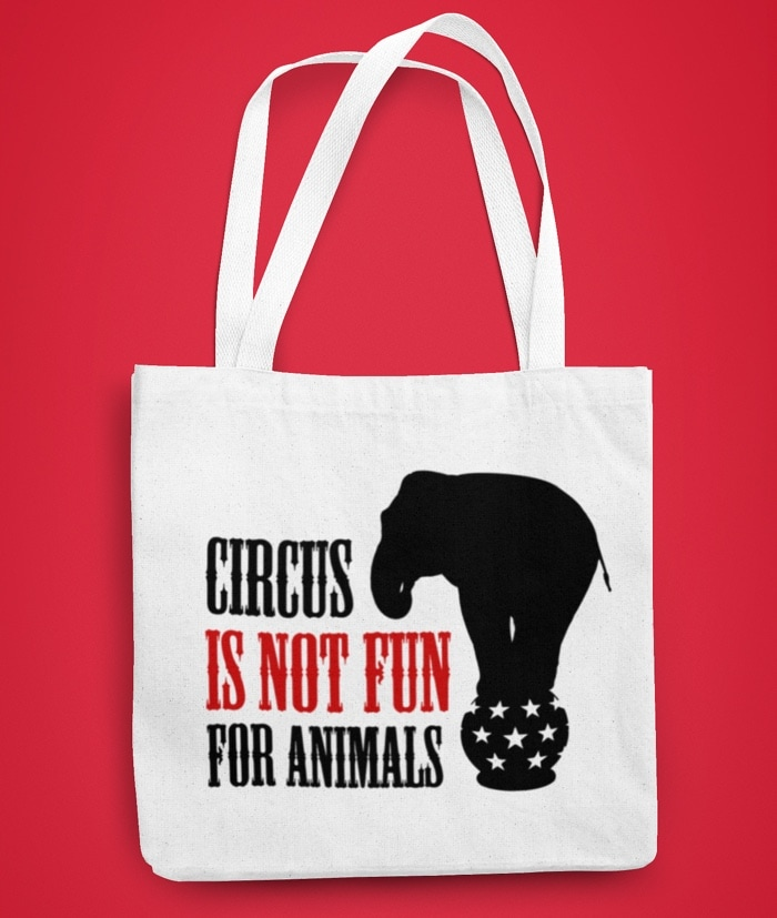 Circus is not fun for Animals – Borsa Attivismo