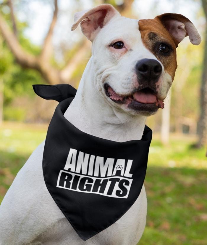 Bandana Animal Rights – Mod.1